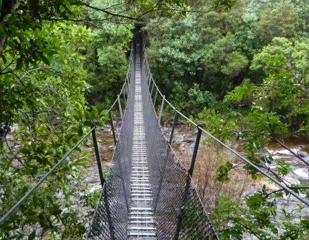 cropped-pont-Coromandel-scaled-1.jpg
